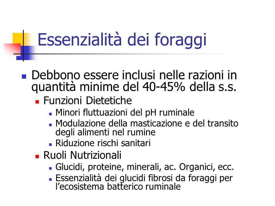 Essenzialità dei foraggi Debbono essere inclusi nelle razioni in quantità minime del 40-45% della s.s. Funzioni Dietetiche Minori fluttuazioni del pH