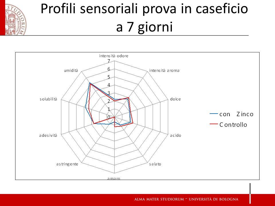 Profili sensoriali prova in caseficio a 7 giorni