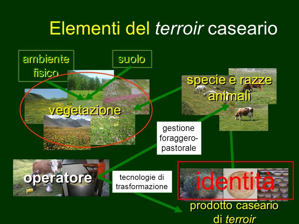 Elementi del terroir caseario ambiente fisico operatore vegetazione specie e razze animali prodotto caseario di terroir gestione foraggero- pastorale tecnologie di trasformazione suolo identità