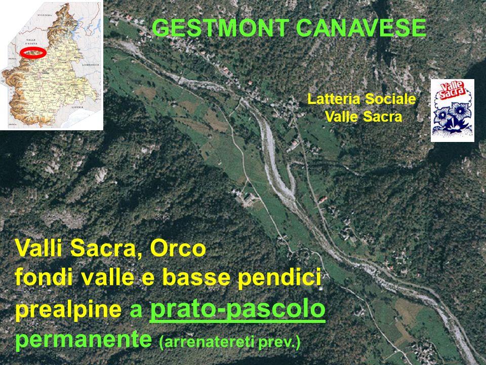 Valli Sacra, Orco fondi valle e basse pendici prealpine a prato-pascolo permanente (arrenatereti prev.) Latteria Sociale Valle Sacra GESTMONT CANAVESE