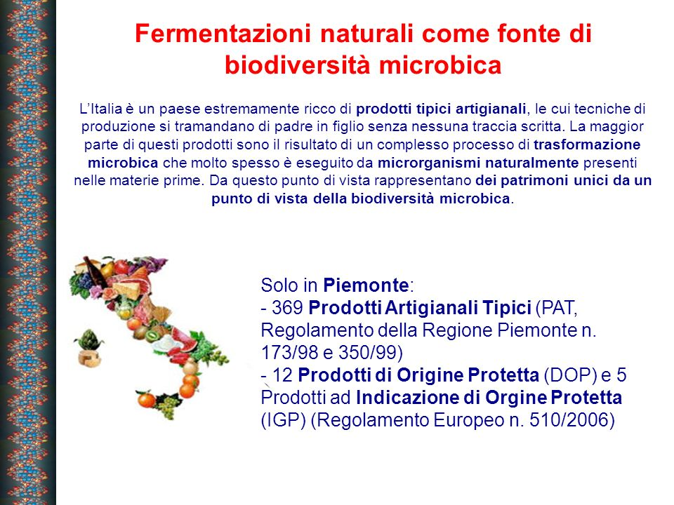 Approcci sperimentali per lo studio dellecologia microbica Cultured bacteria Isolation Phenotypic characterization Molecular characterization Molecular identification Fermented food Culture-independent methods Culture-dependent methods Non-PCR based methods PFGE PCR-based methods RAPD, Rep, Sau-PCR Total bacteria DNA and RNA extraction PCR and RT- PCR amplification Pattern analysis DGGE, TGGE, SSCP Clone library cloning and sequencing Bacterial diversity and activity, ecology and phylogeny data FISH analysis