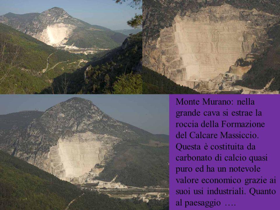 Monte Murano: nella grande cava si estrae la roccia della Formazione del Calcare Massiccio. Questa è costituita da carbonato di calcio quasi puro ed h