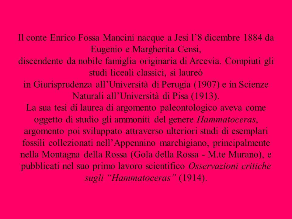 Finita la guerra Fossa Mancini ritorna allUniversità di Pisa e porta a termine il lavoro di rilevamento geologico dellarea della Gola della Rossa e di Frasassi.