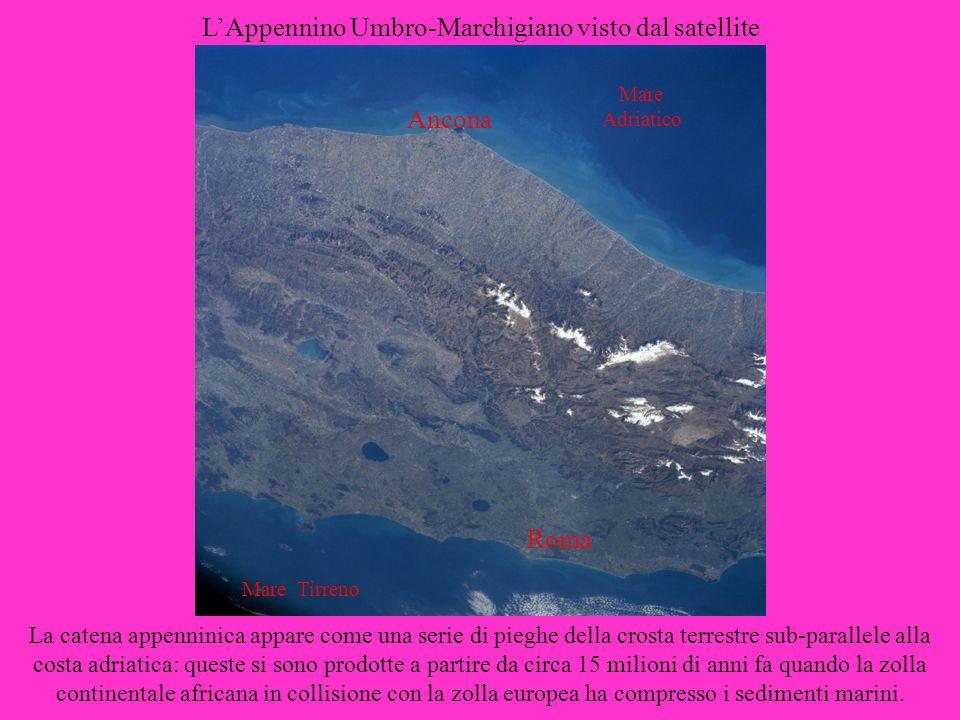 LAppennino Umbro-Marchigiano visto dal satellite Ancona Roma La catena appenninica appare come una serie di pieghe della crosta terrestre sub-parallel