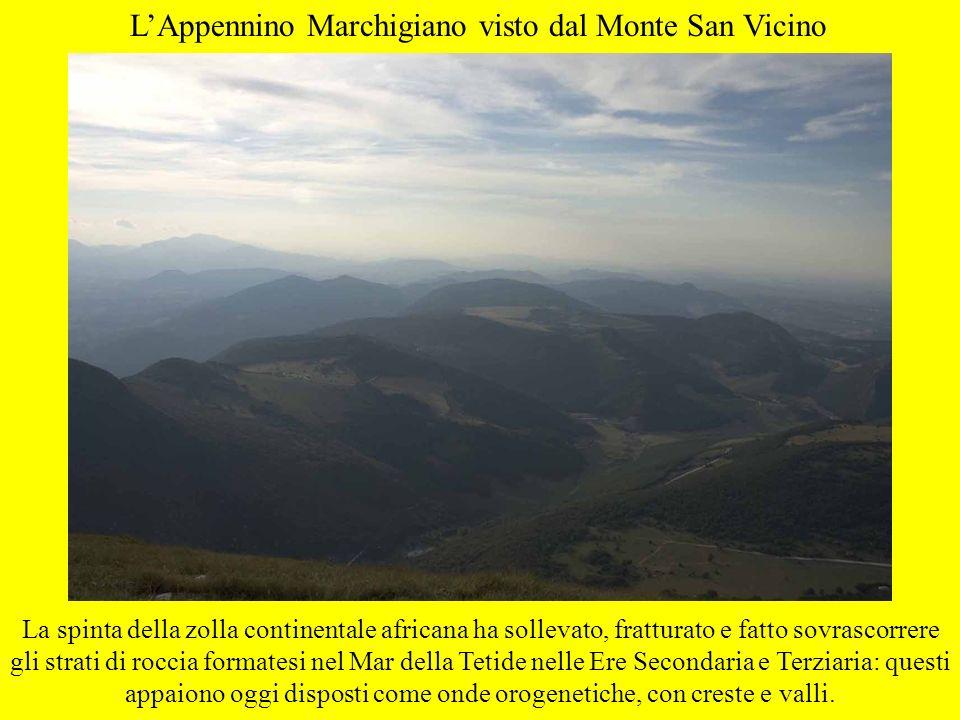 LAppennino Marchigiano visto dal Monte San Vicino La spinta della zolla continentale africana ha sollevato, fratturato e fatto sovrascorrere gli strat