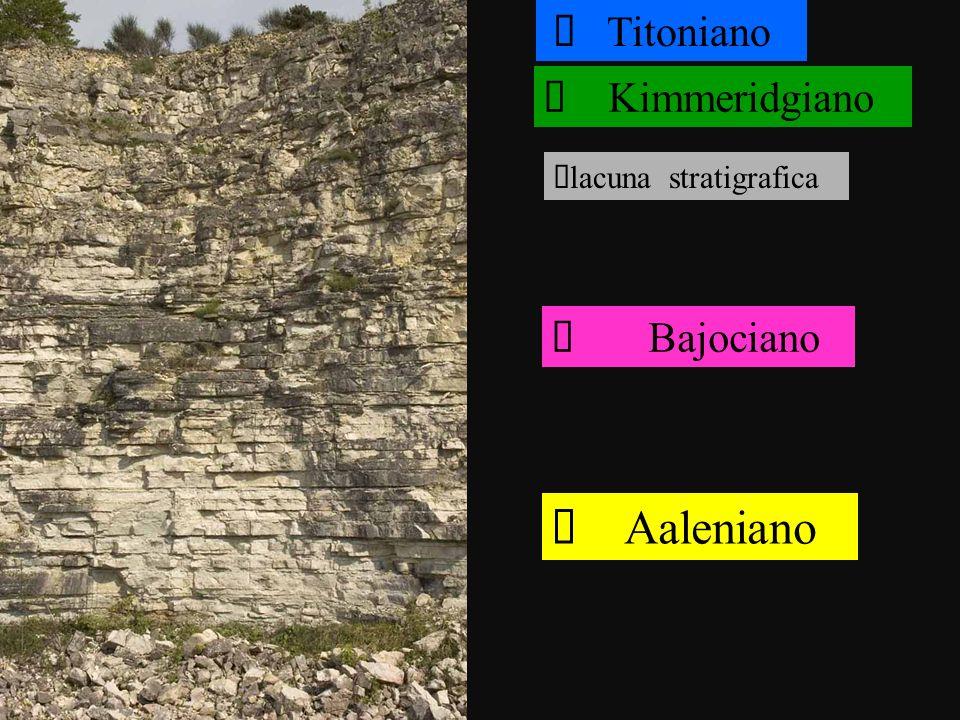 Aaleniano Bajociano lacuna stratigrafica Kimmeridgiano Titoniano