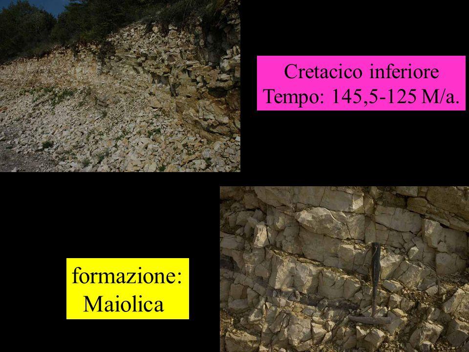 Cretacico inferiore Tempo: 145,5-125 M/a. formazione: Maiolica