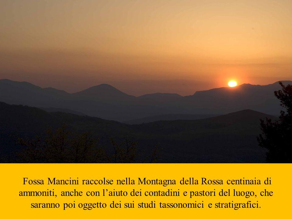 Fossa Mancini raccolse nella Montagna della Rossa centinaia di ammoniti, anche con laiuto dei contadini e pastori del luogo, che saranno poi oggetto d