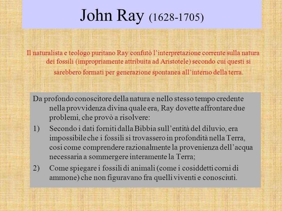 John Ray (1628-1705) Il naturalista e teologo puritano Ray confutò linterpretazione corrente sulla natura dei fossili (impropriamente attribuita ad Aristotele) secondo cui questi si sarebbero formati per generazione spontanea allinterno della terra.