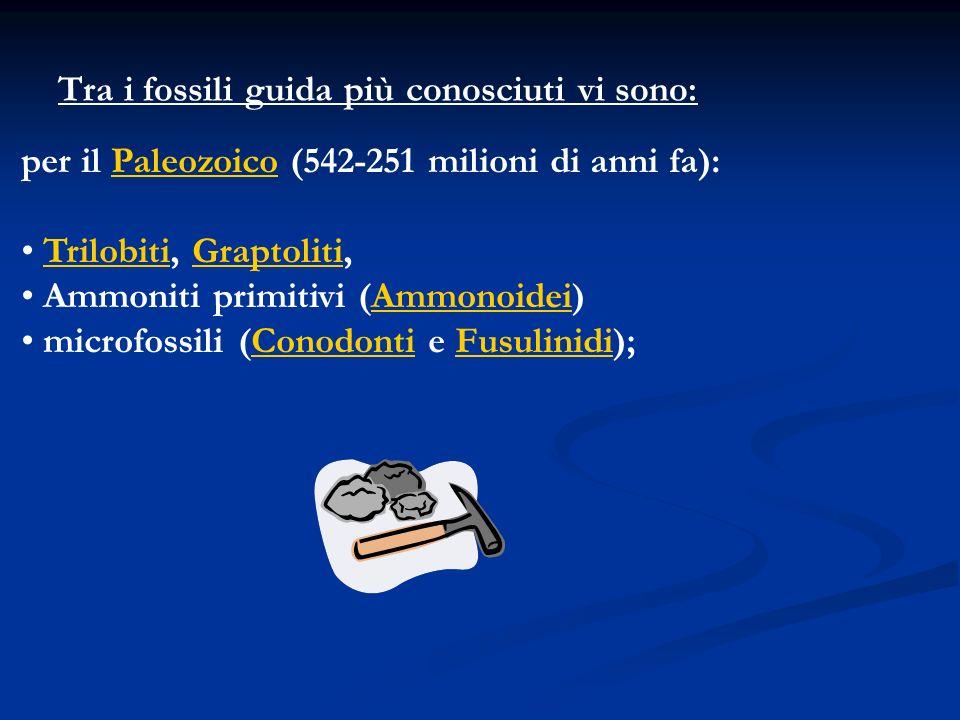 Tra i fossili guida più conosciuti vi sono: per il Paleozoico (542-251 milioni di anni fa):Paleozoico Trilobiti, Graptoliti,TrilobitiGraptoliti Ammoni