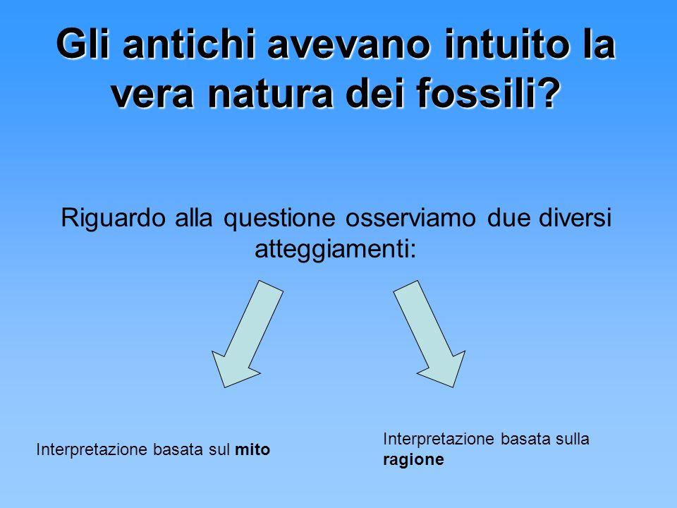 Gli antichi avevano intuito la vera natura dei fossili? Riguardo alla questione osserviamo due diversi atteggiamenti: Interpretazione basata sul mito
