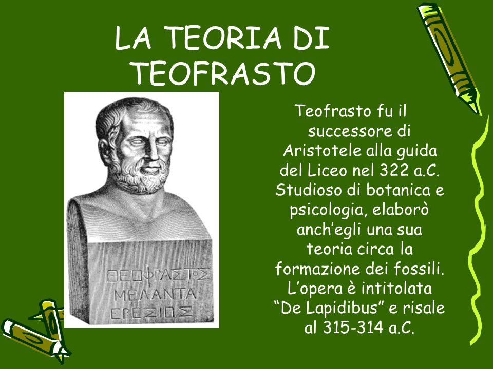 LA TEORIA DI TEOFRASTO Teofrasto fu il successore di Aristotele alla guida del Liceo nel 322 a.C. Studioso di botanica e psicologia, elaborò anchegli