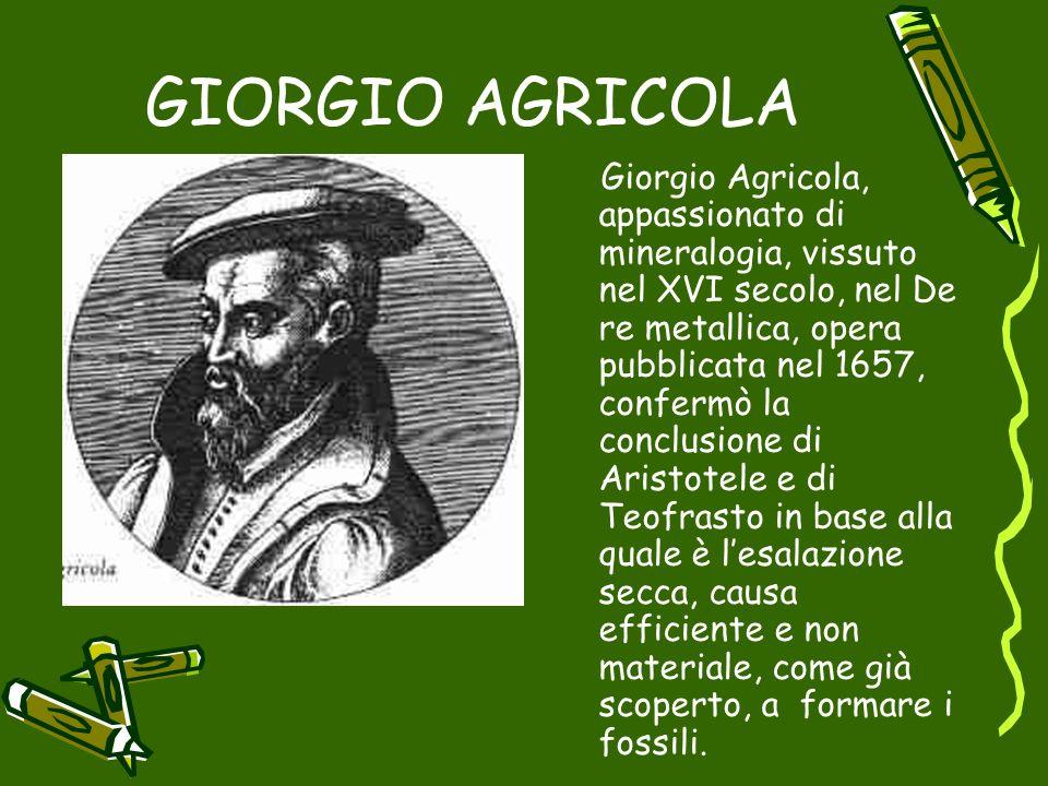 GIORGIO AGRICOLA Giorgio Agricola, Giorgio Agricola, appassionato di mineralogia, vissuto nel XVI secolo, nel De re metallica, opera pubblicata nel 16