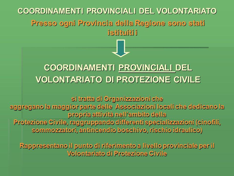 Presso ogni Provincia della Regione sono stati istituiti i COORDINAMENTI PROVINCIALI DEL VOLONTARIATO DI PROTEZIONE CIVILE si tratta di Organizzazioni