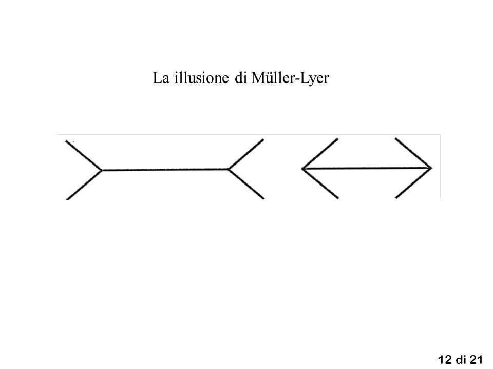 12 di 21 La illusione di Müller-Lyer