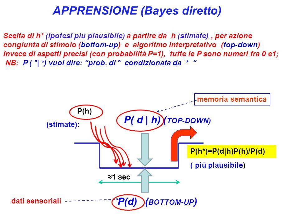 P(d) ( BOTTOM-UP ) 1 sec P( d | h) ( TOP-DOWN) APPRENSIONE (Bayes diretto) Scelta di h* (ipotesi più plausibile) a partire da h (stimate), per azione congiunta di stimolo (bottom-up) e algoritmo interpretativo (top-down) Invece di aspetti precisi (con probabilità P=1), tutte le P sono numeri fra 0 e1; NB: P ( °| *) vuol dire: prob.