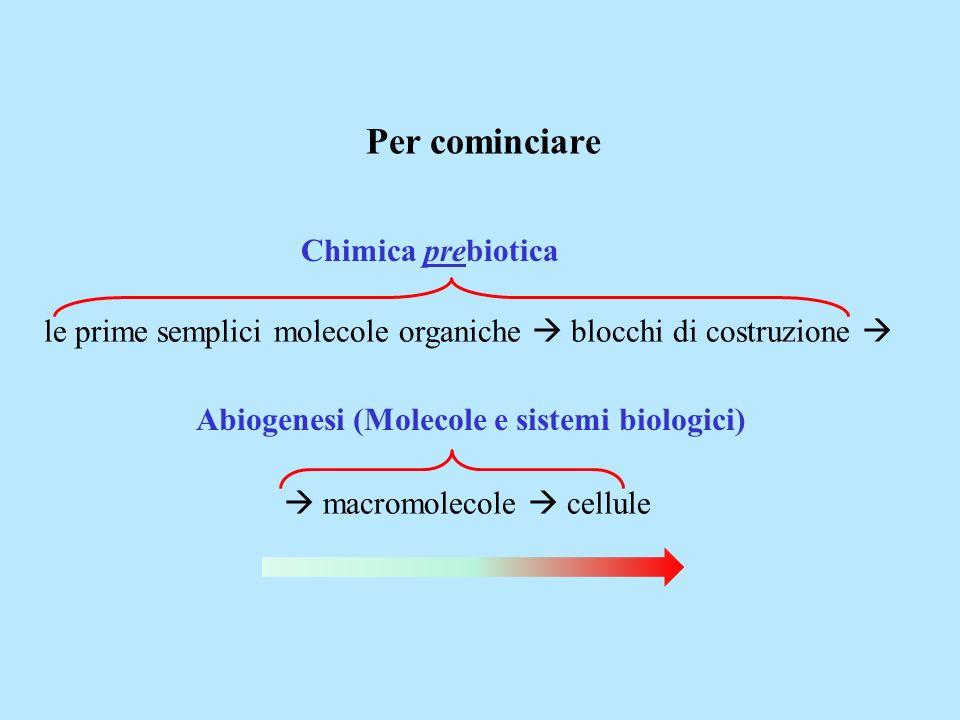 le prime semplici molecole organiche blocchi di costruzione macromolecole cellule Chimica prebiotica Abiogenesi (Molecole e sistemi biologici) Per com