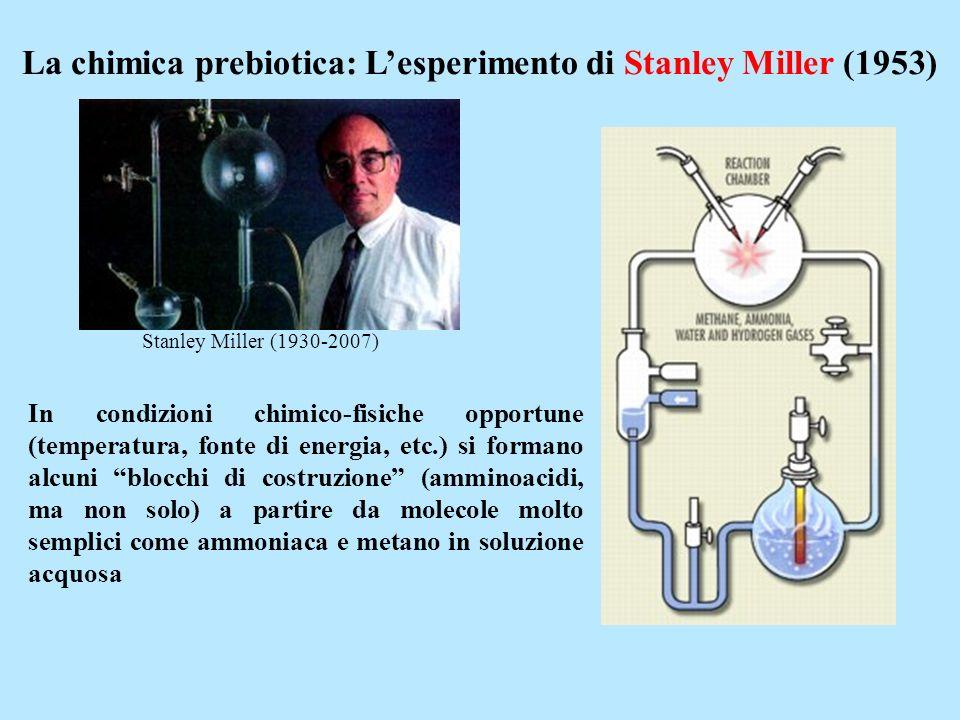 La chimica prebiotica: Lesperimento di Stanley Miller (1953) In condizioni chimico-fisiche opportune (temperatura, fonte di energia, etc.) si formano