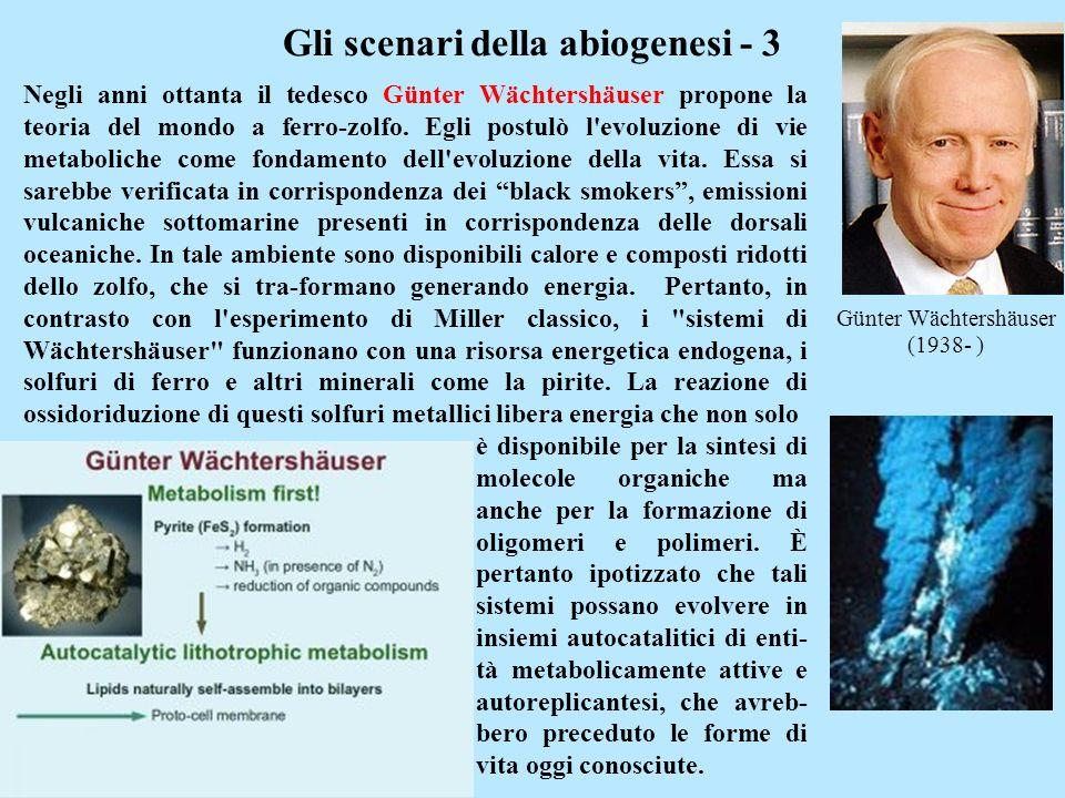 Günter Wächtershäuser (1938- ) Gli scenari della abiogenesi - 3 Negli anni ottanta il tedesco Günter Wächtershäuser propone la teoria del mondo a ferr