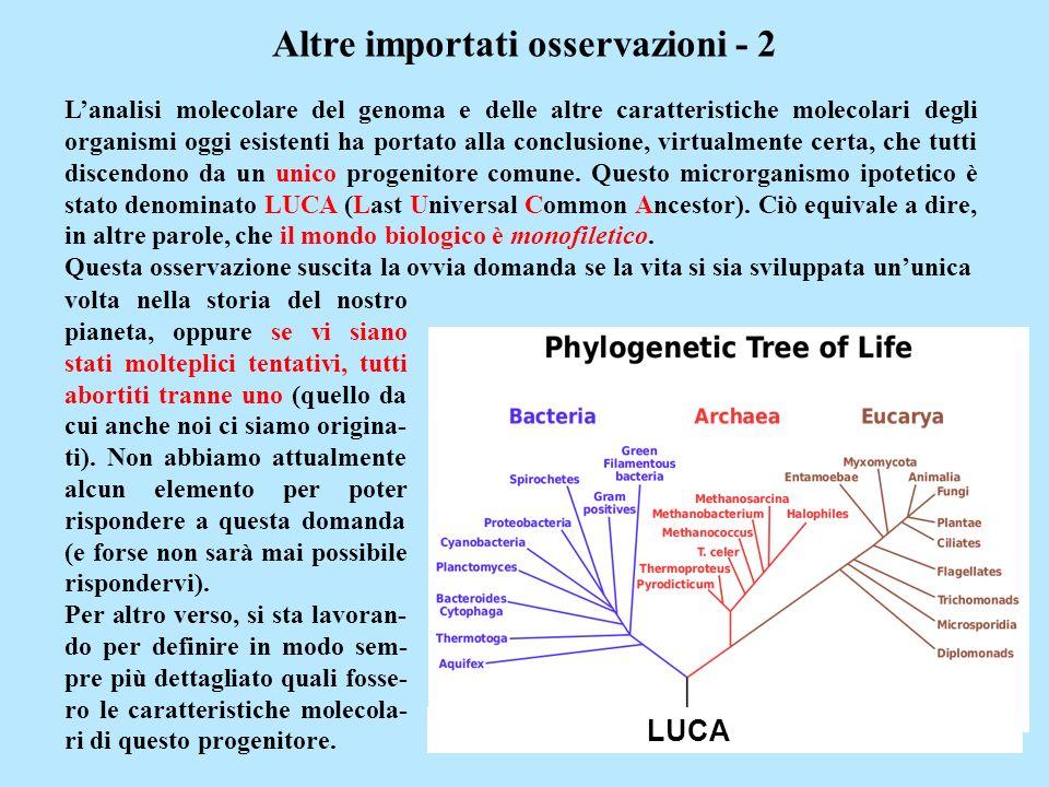 Altre importati osservazioni - 2 Lanalisi molecolare del genoma e delle altre caratteristiche molecolari degli organismi oggi esistenti ha portato all