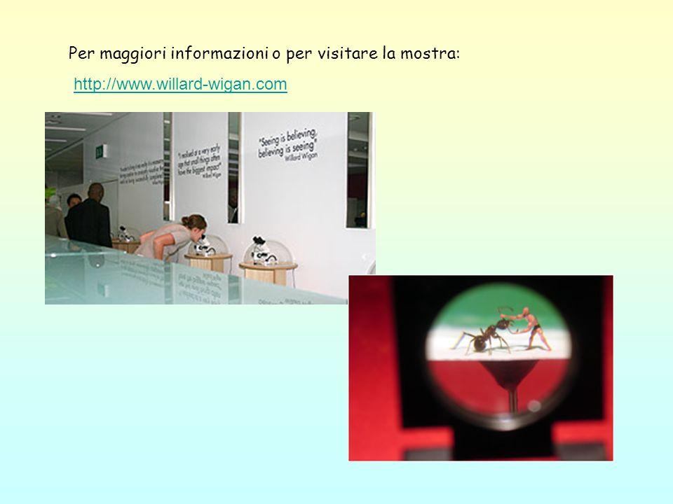 Per maggiori informazioni o per visitare la mostra: http://www.willard-wigan.com