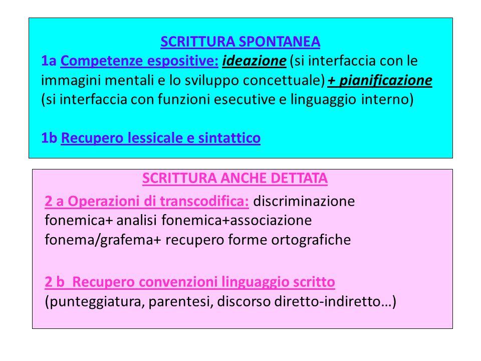 SCRITTURA SPONTANEA 1a Competenze espositive: ideazione (si interfaccia con le immagini mentali e lo sviluppo concettuale) + pianificazione (si interf