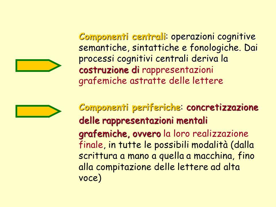 Componenti centrali: operazioni cognitive semantiche, sintattiche e fonologiche. Dai processi cognitivi centrali deriva la costruzione di costruzione