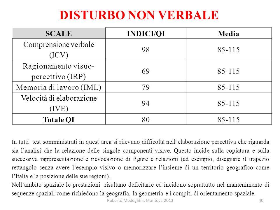 DISTURBO NON VERBALE SCALEINDICI/QIMedia Comprensione verbale (ICV) 9885-115 Ragionamento visuo- percettivo (IRP) 6985-115 Memoria di lavoro (IML)7985-115 Velocità di elaborazione (IVE) 9485-115 Totale QI8085-115 In tutti test somministrati in questarea si rilevano difficoltà nellelaborazione percettiva che riguarda sia lanalisi che la relazione delle singole componenti visive.