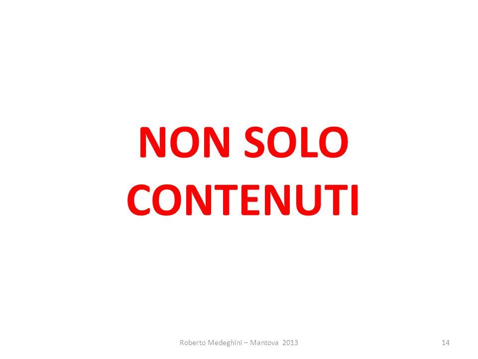 NON SOLO CONTENUTI Roberto Medeghini – Mantova 201314