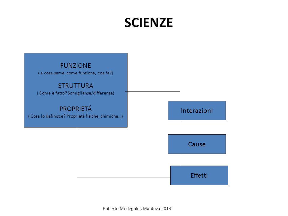 SCIENZE FUNZIONE ( a cosa serve, come funziona, coa fa?) STRUTTURA ( Come è fatto? Somiglianse/differenze) PROPRIETÁ ( Cosa lo definisce? Proprietà fi
