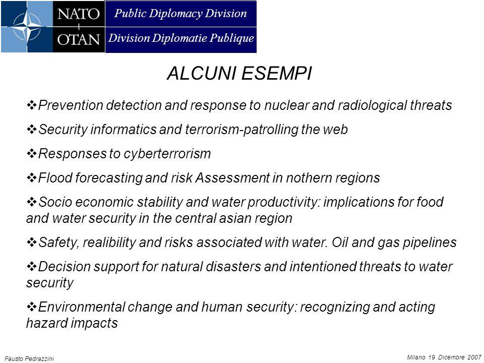 Public Diplomacy Division Division Diplomatie Publique AMMAN, 21 JUNE 2007 Fausto Pedrazzini Milano 19 Dicembre 2007 UNO SCHEMA RIPRODUCIBILE.