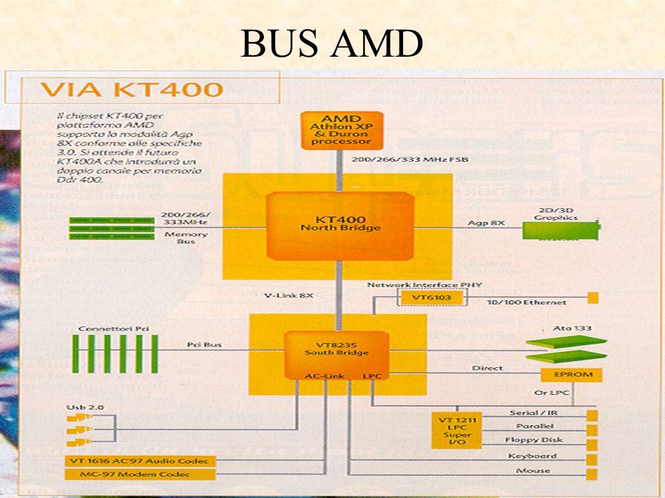 BUS AMD