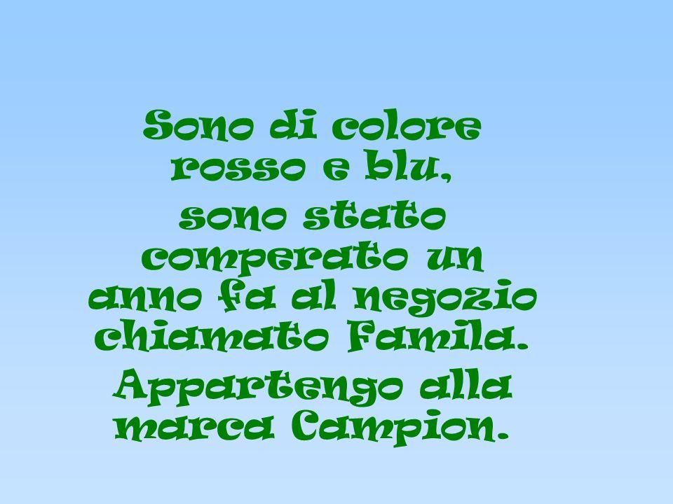 Sono di colore rosso e blu, sono stato comperato un anno fa al negozio chiamato Famila. Appartengo alla marca Campion.