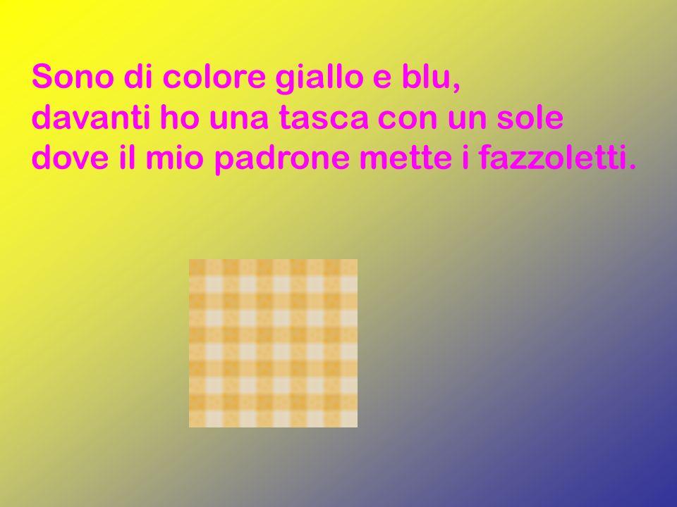Sono di colore giallo e blu, davanti ho una tasca con un sole dove il mio padrone mette i fazzoletti.