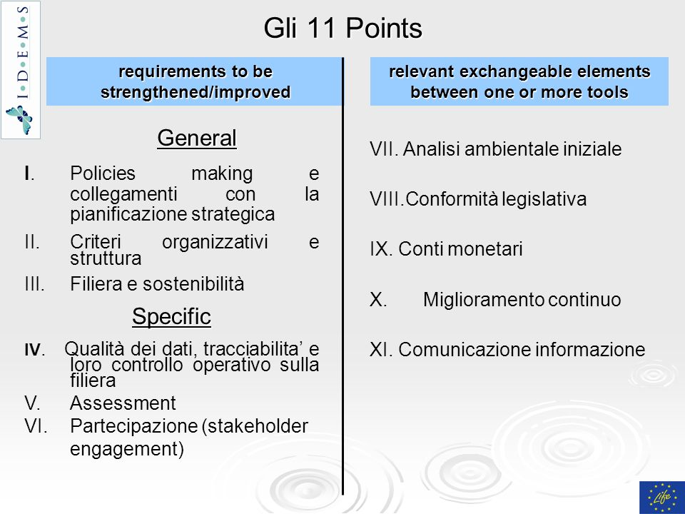 Gli 11 Points General VII. Analisi ambientale iniziale VIII.Conformità legislativa IX.