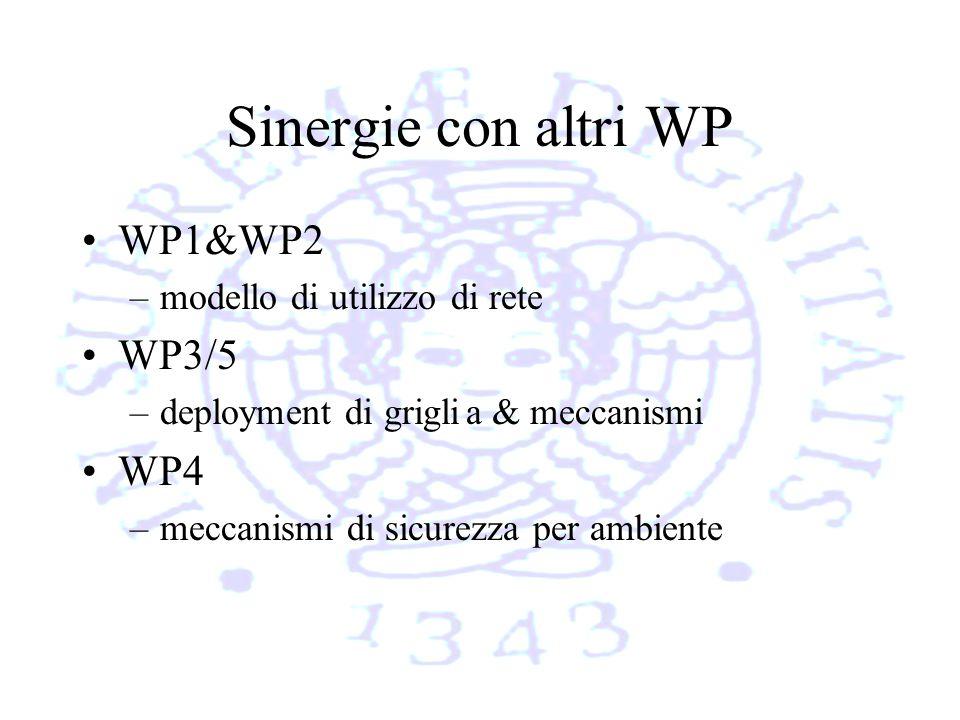 Sinergie con altri WP WP1&WP2 –modello di utilizzo di rete WP3/5 –deployment di griglia & meccanismi WP4 –meccanismi di sicurezza per ambiente