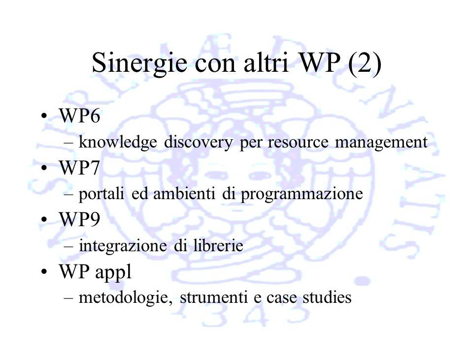 Sinergie con altri WP (2) WP6 –knowledge discovery per resource management WP7 –portali ed ambienti di programmazione WP9 –integrazione di librerie WP appl –metodologie, strumenti e case studies