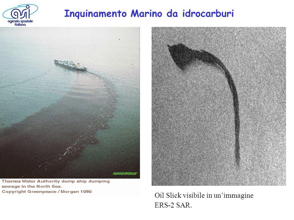 Oil Slick visibile in unimmagine ERS-2 SAR. Inquinamento Marino da idrocarburi