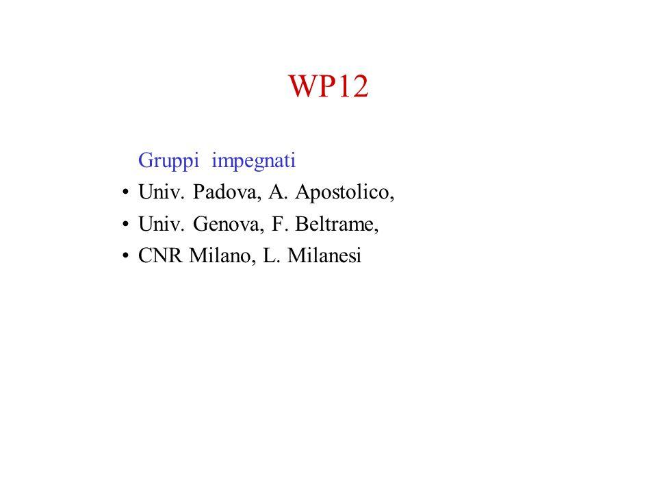 WP12 Gruppi impegnati Univ. Padova, A. Apostolico, Univ. Genova, F. Beltrame, CNR Milano, L. Milanesi