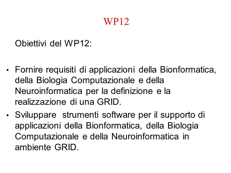 WP12 Obiettivi del WP12: Fornire requisiti di applicazioni della Bionformatica, della Biologia Computazionale e della Neuroinformatica per la definizi