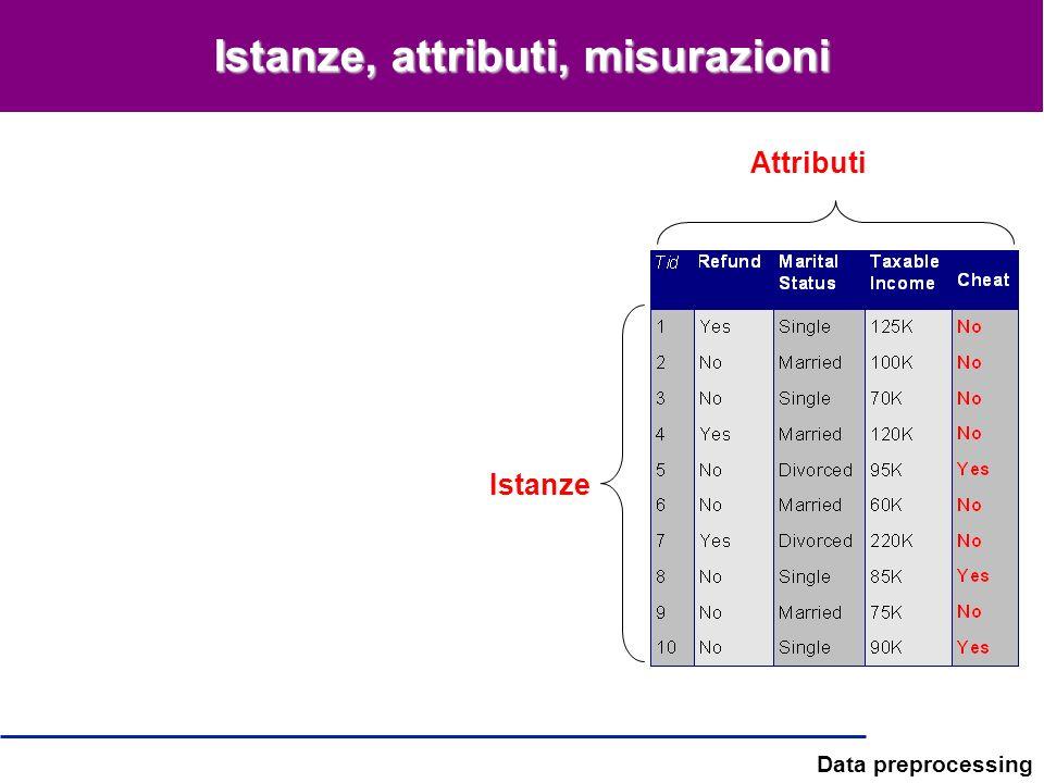 Data preprocessing Istanze, attributi, misurazioni Attributi Istanze