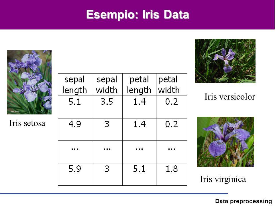 Data preprocessing Esempio: Iris Data Iris setosa Iris versicolor Iris virginica