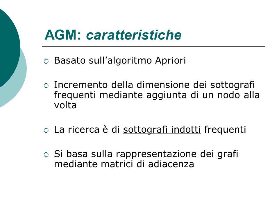 AGM: caratteristiche Basato sullalgoritmo Apriori Incremento della dimensione dei sottografi frequenti mediante aggiunta di un nodo alla volta La rice