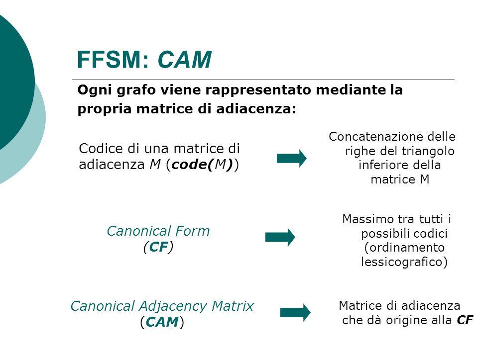 FFSM: CAM Ogni grafo viene rappresentato mediante la propria matrice di adiacenza: Codice di una matrice di adiacenza M (code(M)) Canonical Form (CF)