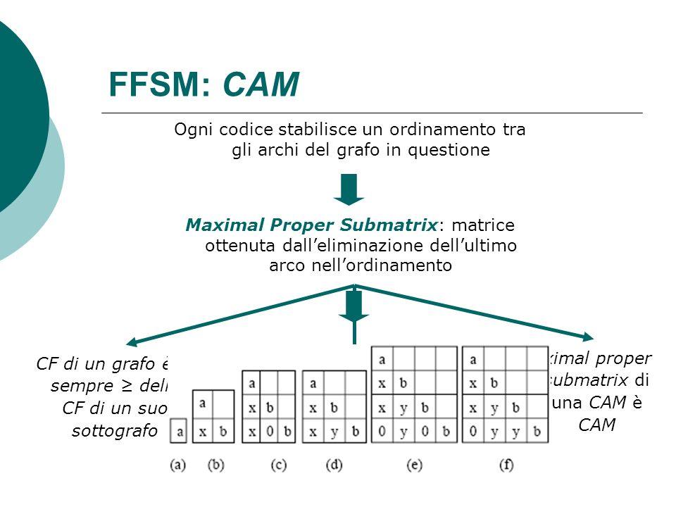 FFSM: CAM Ogni codice stabilisce un ordinamento tra gli archi del grafo in questione Maximal Proper Submatrix: matrice ottenuta dalleliminazione dellu