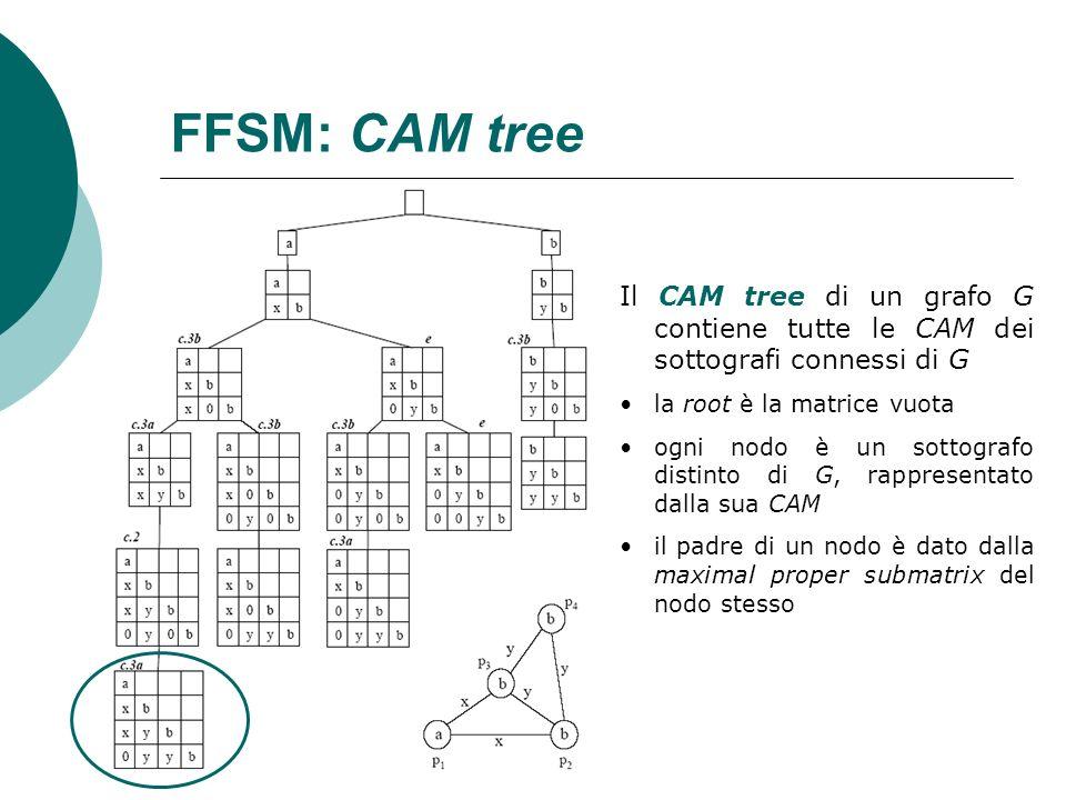 FFSM: CAM tree Il CAM tree di un grafo G contiene tutte le CAM dei sottografi connessi di G la root è la matrice vuota ogni nodo è un sottografo disti