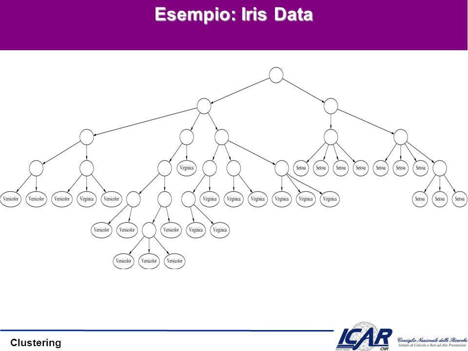 Clustering Esempio: Iris Data