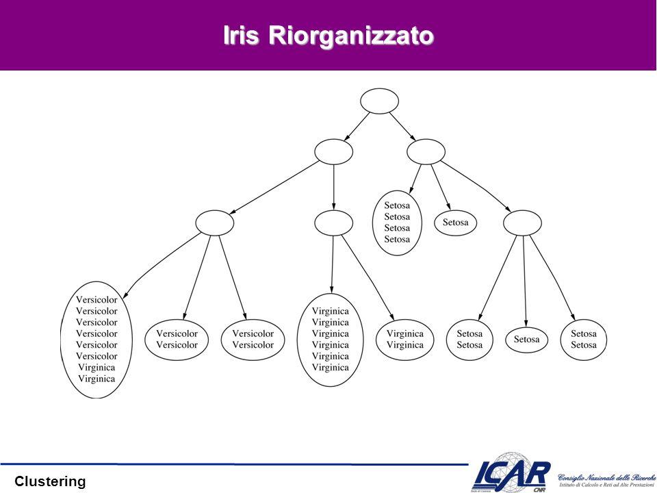 Clustering Iris Riorganizzato