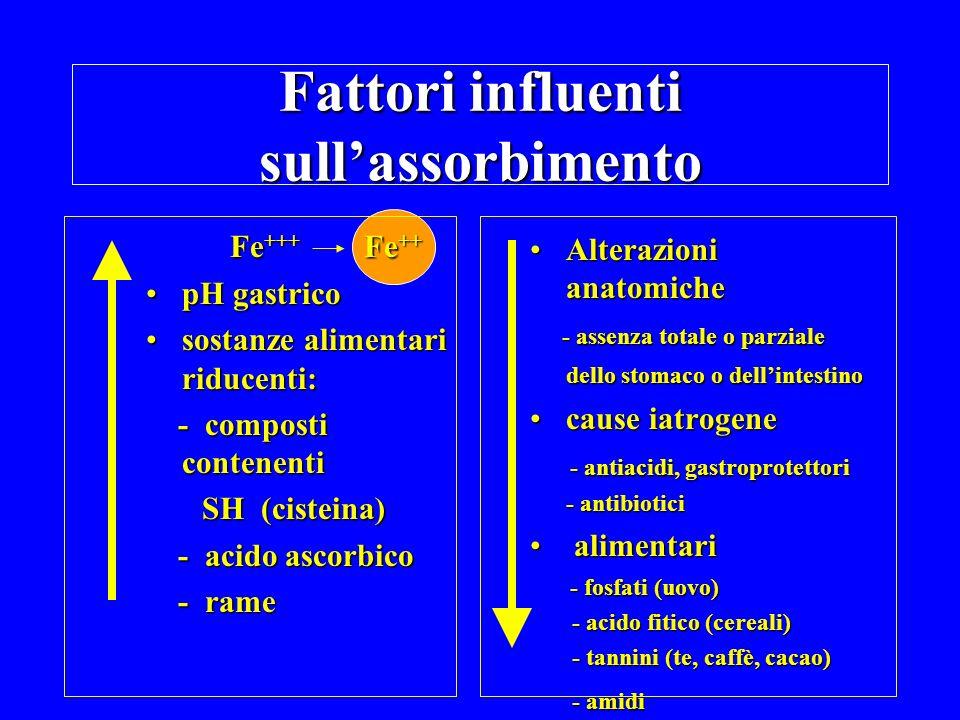Fattori influenti sullassorbimento Fe +++ Fe ++ pH gastricopH gastrico sostanze alimentari riducenti:sostanze alimentari riducenti: - composti contenenti - composti contenenti SH (cisteina) SH (cisteina) - acido ascorbico - acido ascorbico - rame - rame Alterazioni anatomicheAlterazioni anatomiche - assenza totale o parziale dello stomaco o dellintestino - assenza totale o parziale dello stomaco o dellintestino cause iatrogenecause iatrogene - antiacidi, gastroprotettori - antiacidi, gastroprotettori - antibiotici - antibiotici alimentari alimentari - fosfati (uovo) - fosfati (uovo) - acido fitico (cereali) - acido fitico (cereali) - tannini (te, caffè, cacao) - tannini (te, caffè, cacao) - amidi - amidi