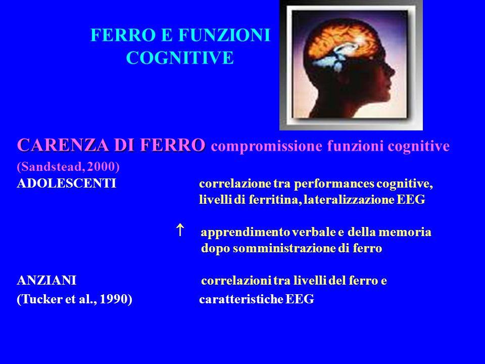 FERRO E FUNZIONI COGNITIVE CARENZA DI FERRO CARENZA DI FERRO compromissione funzioni cognitive (Sandstead, 2000) ADOLESCENTI correlazione tra performances cognitive, (T et al., 1984; livelli di ferritina, lateralizzazione EEG Brune et al., 1996) apprendimento verbale e della memoria dopo somministrazione di ferro ANZIANI correlazioni tra livelli del ferro e (Tucker et al., 1990) caratteristiche EEG